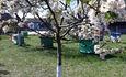 Агроусадьба  «Под липами в Дмитровичах»