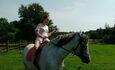 Агроусадьба «Ирина», Конные прогулки в г.Верхнедвинск, 30км.от усадьбы