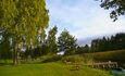 Усадьба «Устье LIFE», Общественное место отдыха на оз.Недрово, создано нами для туристов