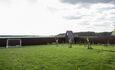 Усадьба Домик в пуще Дом №1 Футбольное поле и молодой сад
