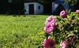 Агроусадьба «Оленья»