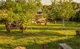 Усадьба «Беловежское поместье», сад