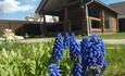 Агроусадьба «Дом с сауной» посуточная аренда