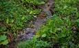 Агроусадьба «Мірскія крыніцы», криница