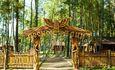 Беседочный городок Лесной филин