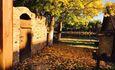 золотая осень на хуторе Мустанг