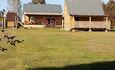 Агроусадьба «Клёвая»  Домики от 2 до 12 человек