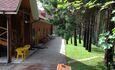 """Recreation centre """"Vaspan"""", выход из номеров на сосновый лес"""