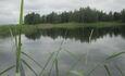 АгроЭкоУсадьба на Браславских озерах., Острова у нашего берега.