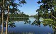 «Дыхание леса» в Марте скидка 20% на аренду домиков