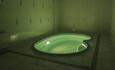Агроусадьба Чаплин Гостевой домик 2 с баней и бассейном, Русская баня с бассейном 100р за 2 часа