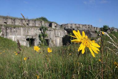 Неизвестная крепость Российской империи