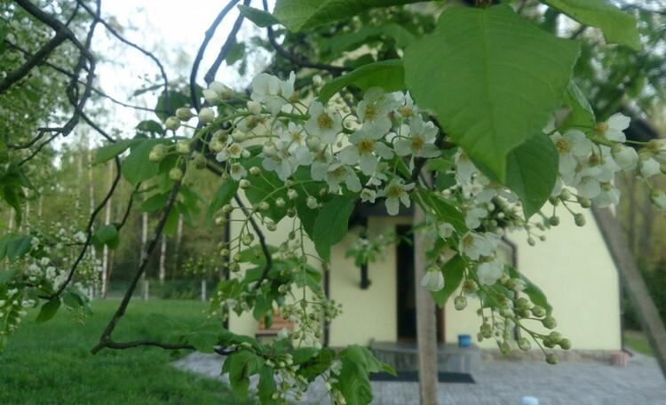 Агроусадьба «Заезд Зубачи», Живая природа