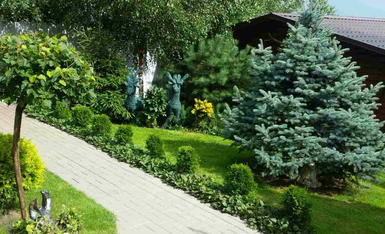 Домик под Минском бассейн баня камин квадроциклы