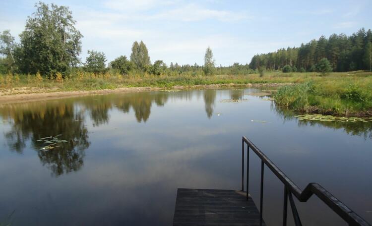 Домик охотника «Борисовский опытный лесхоз», озеро