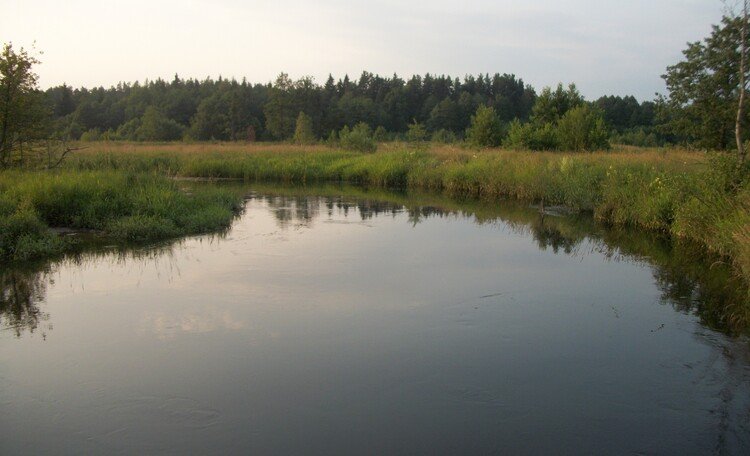 Агроусадьба «Хуторок», речка Сула