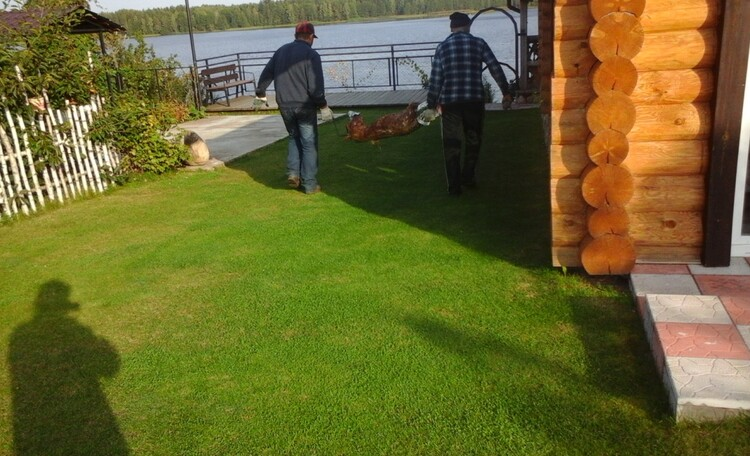 """Farmstead """"Fishing Pula"""" (""""Rybackaya Pulva"""")"""