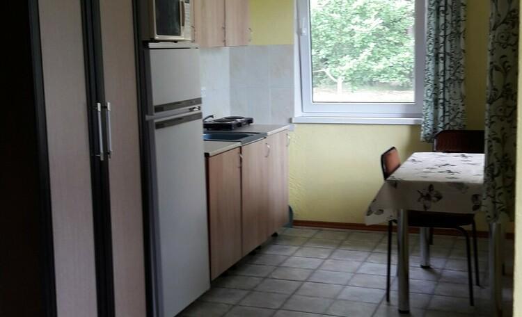 Агроусадьба «Старинки», дом шале кухня блок №2