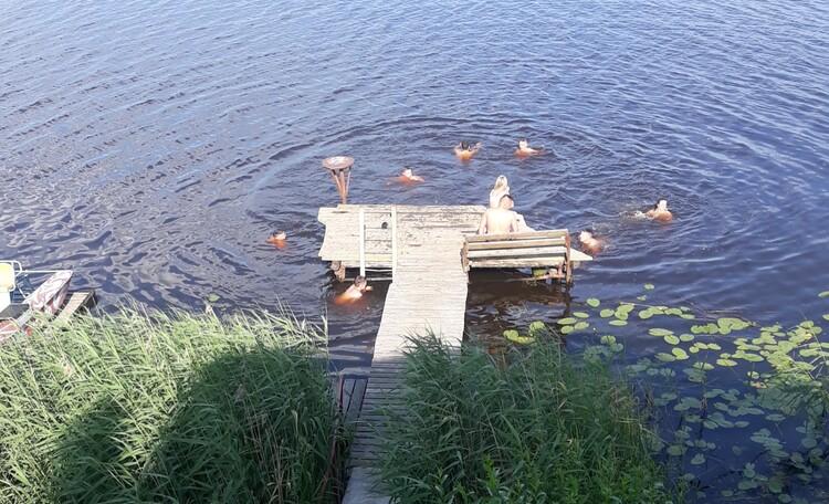 Агроусадьба «Рыбацкая Пульва»