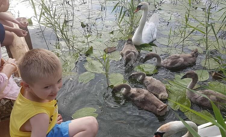 Агроусадьба «Ирина», Хозяева усадебного озерца :) :) :)