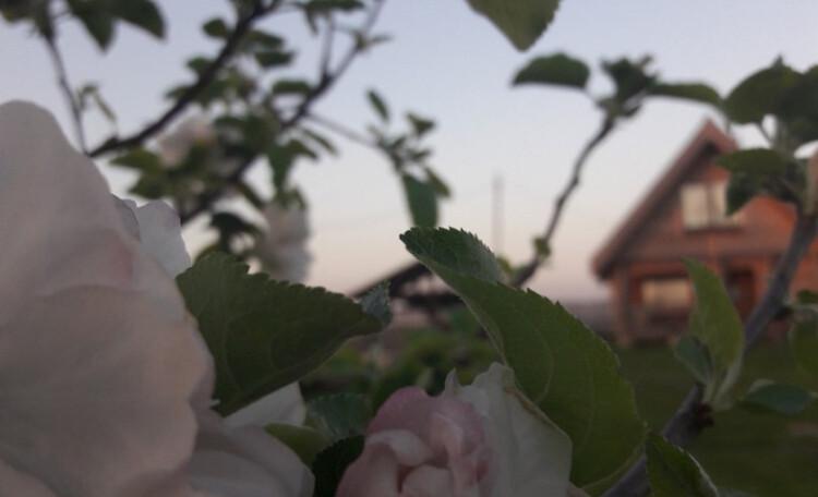Агроусадьба Завалинка. Русская баня. 12 спальных мест.