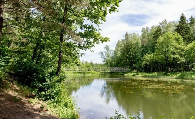 «Домики в лесу», гостевой дом под Минском
