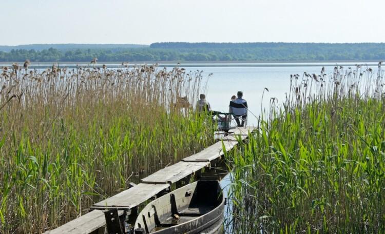 Рай рыбака озеро Свирь   усадьба Набережная