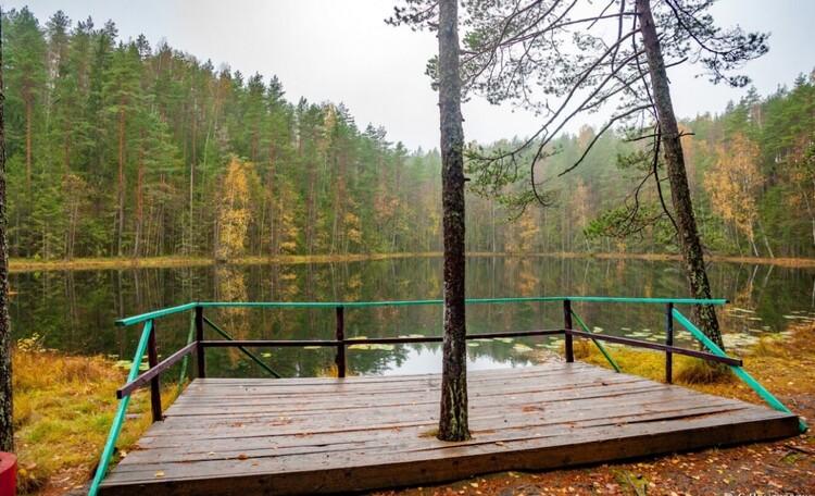 Голубые озера домик в лесу. Нарочанский край, Озеро Мертвое