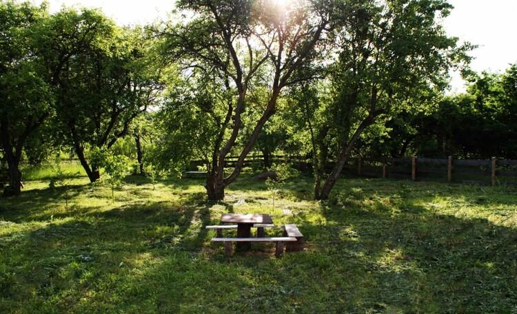 """Усадьба """"Солнечный домик""""  в Беловежской пуще, Одна из зон отдыха в саду"""