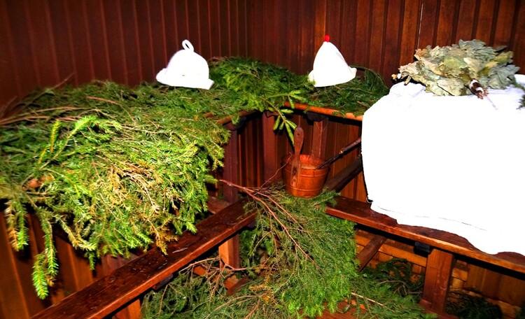 Агроусадьба «Брода», Еловая баня - профилактика многих болезней и вирусов в том числе.