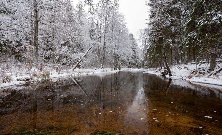 Голубые озера домик в лесу. Нарочанский край, Река Страча зимою