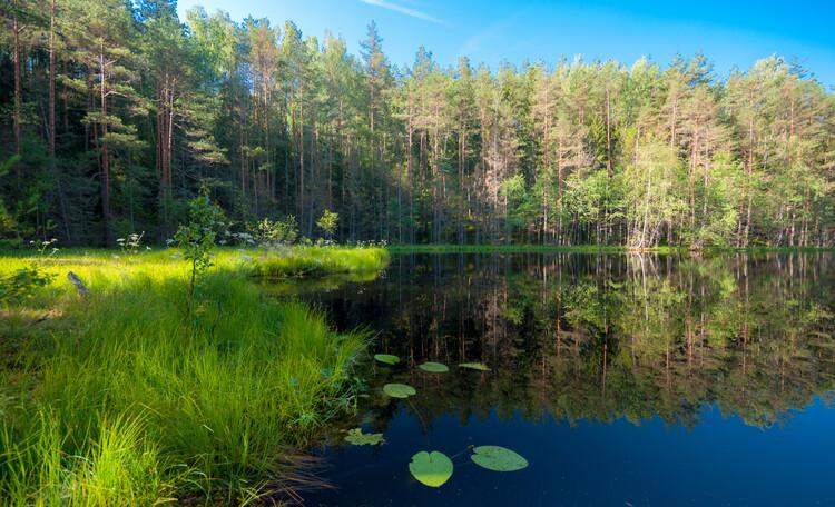 Голубые озера Беларусь | Нарочь, Озеро Мертвое с двойным дном 300м