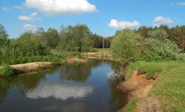 Агроусадьба «Залесье», Речка Илья
