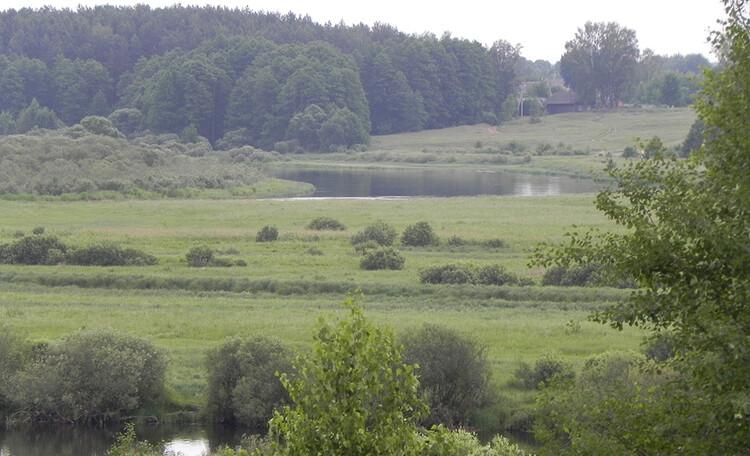 Усадьба «Березинская мечта» у реки, Усадьба в аренду Березинская мечта рядом с рекой Березина в Минской области.