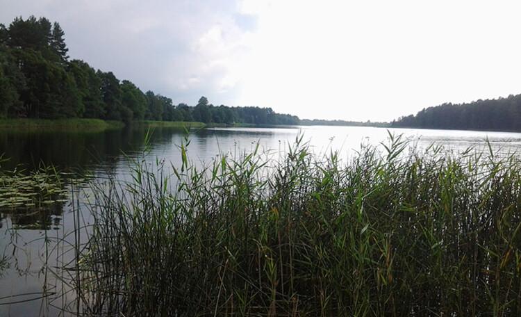 В окрестностях усадьбы находятся больше десятка озер Глубокского района, в том числе самое глубокое озеро Белое