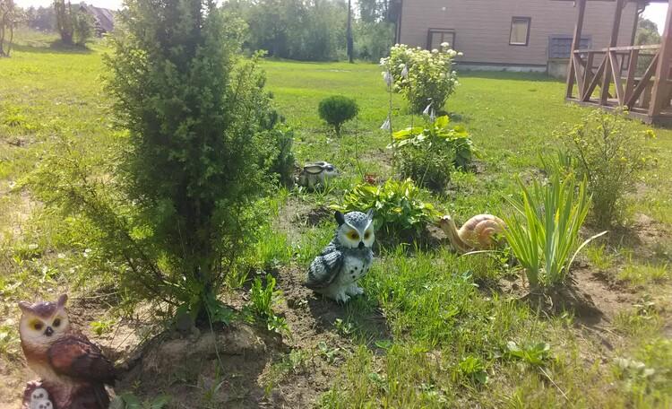 Агроусадьба «Черница»