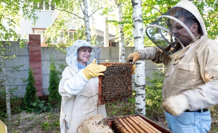 """Усадьба """"ВеЛюНа"""", Мастер-класс по пчеловодству"""