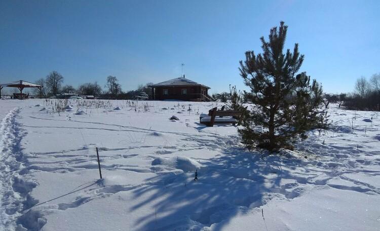 Агроусадьба «Снеги парк»