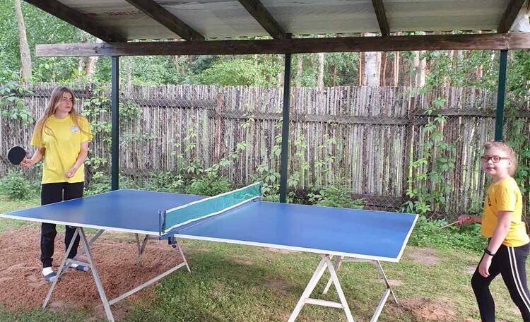 Агроусадьба «Заречная», настольный теннис