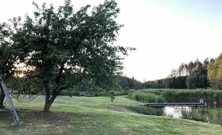 Голубые озера усадьба Трабутишки, Наша территория с прудом.