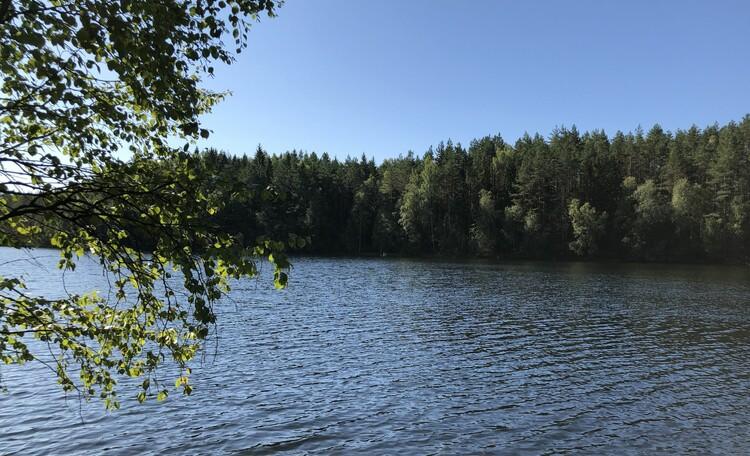 Голубые озера усадьба Трабутишки, Голубые озера.