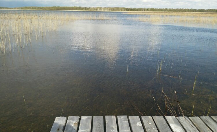 """Центр оздоровления и отдыха """"Полуостров сокровищ"""", Центр Полуостров сокровищ, Выход к озеру ближний (150м)"""