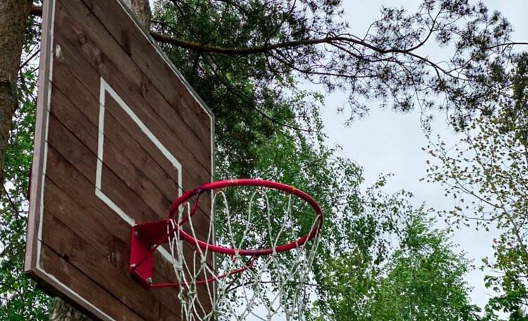 Агроусадьба «Заречная», баскетбол
