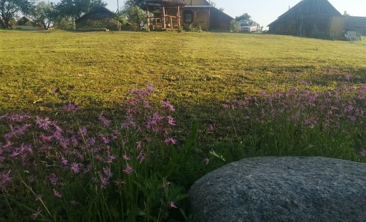 Агроусадьба «Тихая гавань»