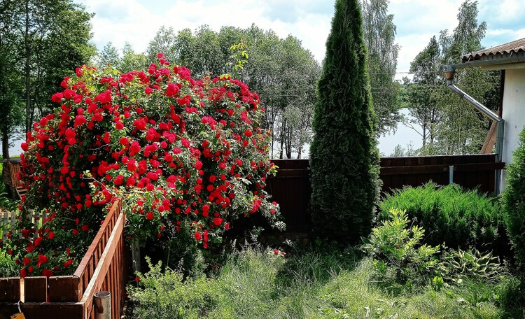 Агроусадьба «На реке Бобр». Бесплатная сауна.