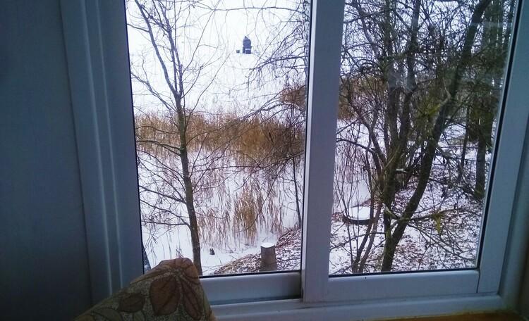Агроусадьба «Долгоозерная», Торцевое окно балкона 2 эт.