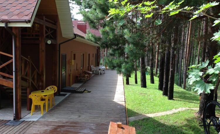 База отдыха «Васпан», выход из номеров на сосновый лес