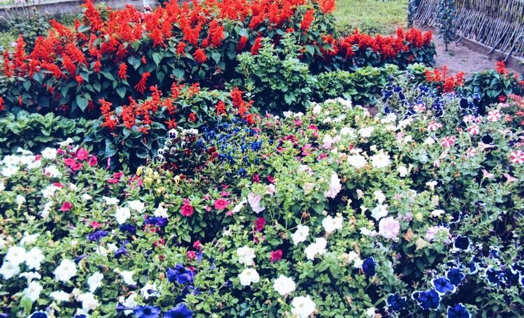 Агроусадьба «У Дона Мирона»