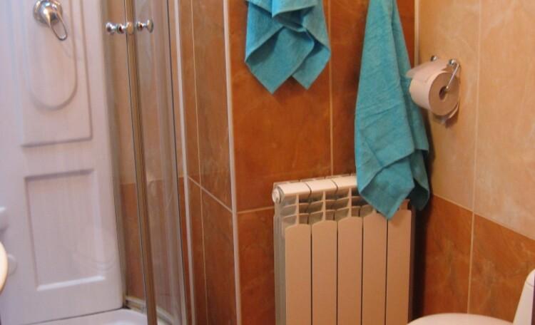 """Агроусадьба """"Белорусский Байкал"""", В гостевом доме один санузел с душевой кабиной."""