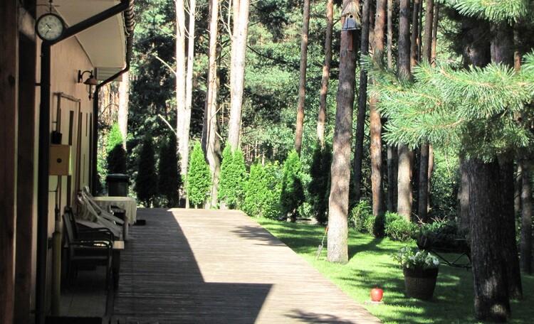 """Recreation centre """"Vaspan"""", зона релакса,как же прекрасен этот сосновый воздух"""